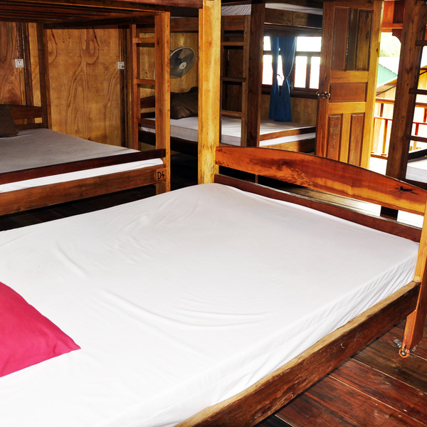 Bunk Bed in Mixed Dormitory Room with Sea view