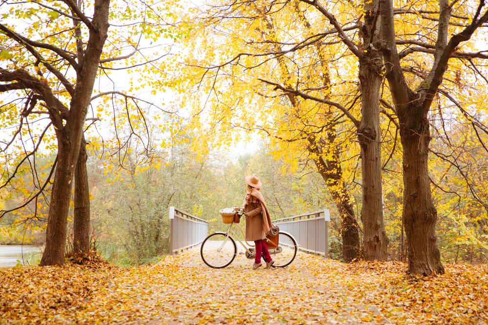 Sonbaharın Büyüleyici Yolculuğu