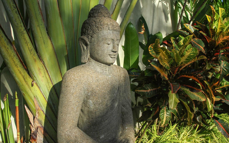 Budda Cinta